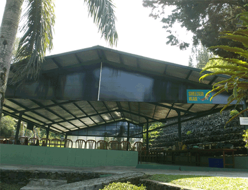 lembah-bougenville-resort-shelter-ikan