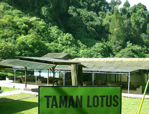 lembah-bougenville-resort-taman-lotus